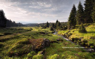 Maak een camperreis naar Tsjechië afbeelding