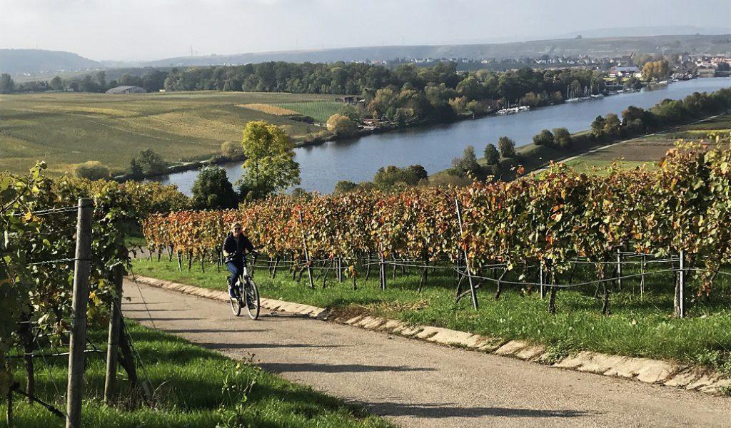 Zwerven langs de Neckar afbeelding